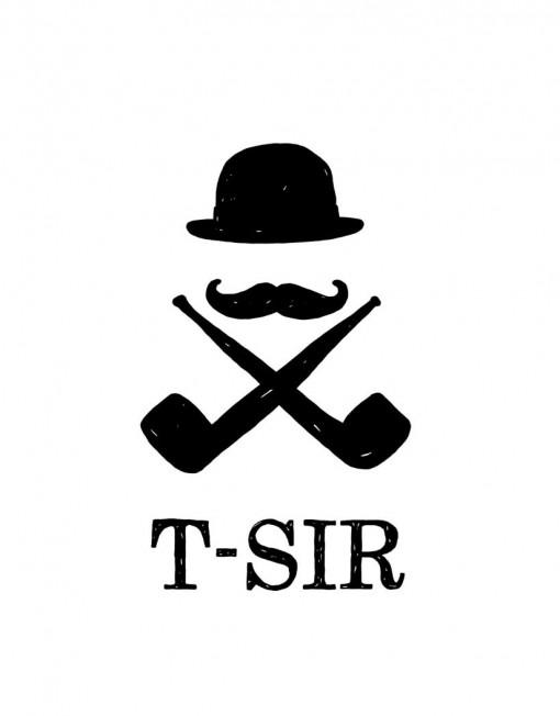 camiseta_imagen_t-sir_blanca